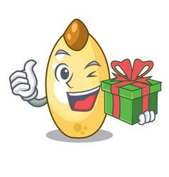 With gift cedar pine nuts on a cartoon vector