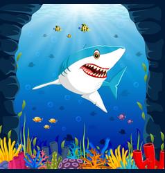 cartoon shark under the sea vector image vector image