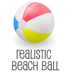 colorful realistic beach ball vector image