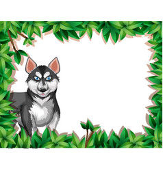 A husky on nature frame vector