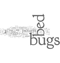 Bed bugs pictures vector
