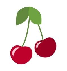 Cherry fruit isolated vector