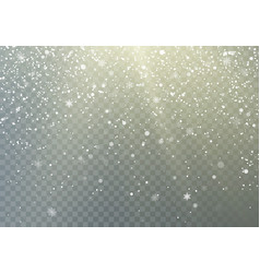 falling snowflakes transparent background frost vector image