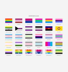 Identity pride flags set pride month vector