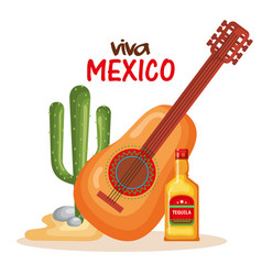 mexican culture cactus with guitar and tequila vector image