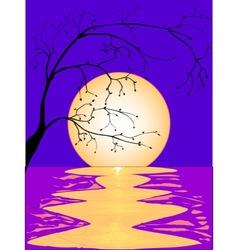 Moon Reflection vector