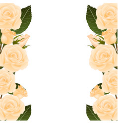 orange rose border vector image