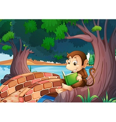 A monkey reading a book under the big tree near vector image