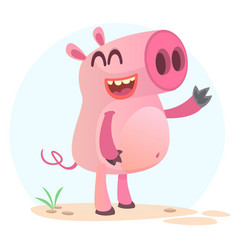 205pig vector image