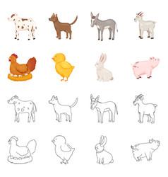 breeding and kitchen logo vector image