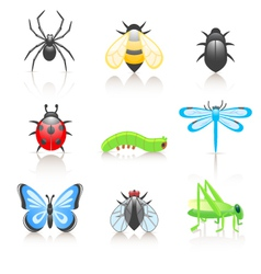 Cartoon insect icon set vector
