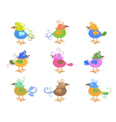 colorful cartoon birds vector image