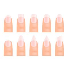 Manicure nails various type of fingernail art vector
