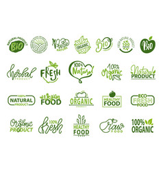 natural bio and organic food vector image