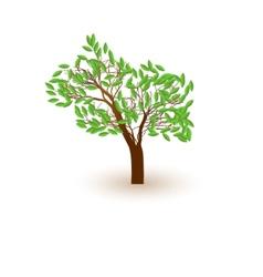 tree casts a shadow vector image vector image