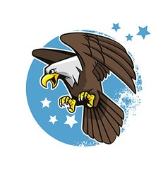 Flying bald eagle vector