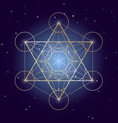 Metatron cube symbol on a starry sky elements vector