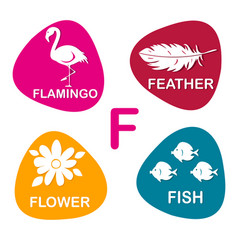 cute alphabet in f letter for flamingo vector image