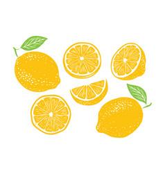 Fresh lemon fruits collection vector