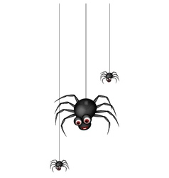 Funny spider cartoon family vector