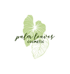 Palm leaves hand drawn logotype layout vector