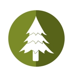 pine tree forest camping icon button shadow vector image