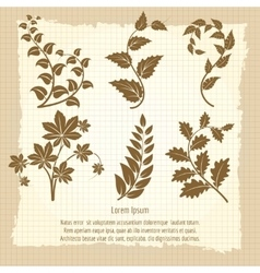 Vintage poster design with branches vector image vector image