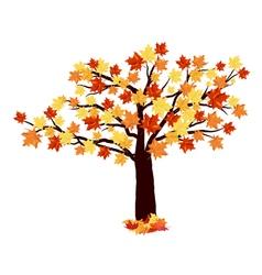 Autumn maple tree vector