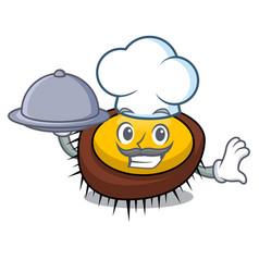 chef with food sea urchin mascot cartoon vector image