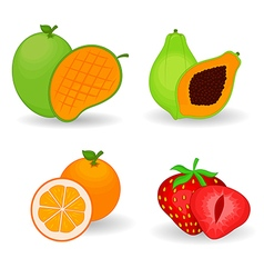 Delicious Fruit Set vector image
