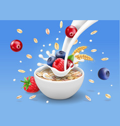 Oatmeal and forest berries milk splashing vector