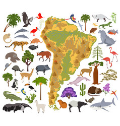South america flora and fauna map flat elements vector
