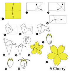 Step instructions how to make origami a cherry vector