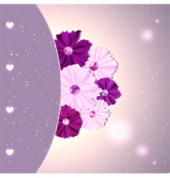 Springtime Colorful Cosmos Flower vector image