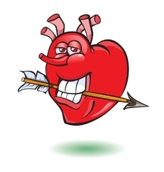 Smiley thumb up heart vector image vector image