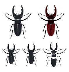 beetle deer vector image
