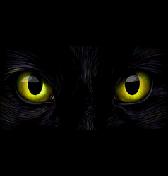 Black cats big yellow eyes close up vector