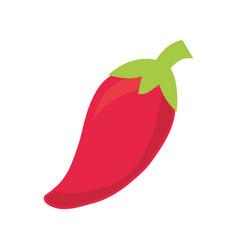 chili pepper design vector image