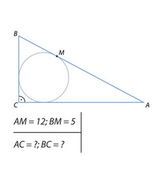 finding the legs of a right triangle vector image