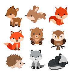 woodland animals set vector image