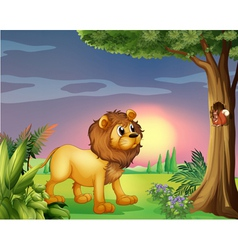 A lion watching a squirrel vector image