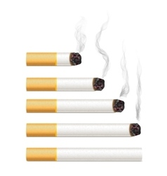 Set of five different realistic cigarettes with vector image