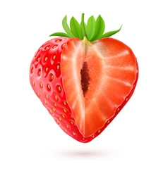Appetizing strawberry vector
