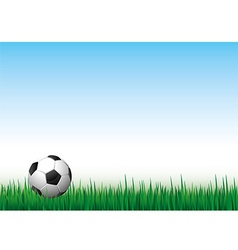 ball grass vector image