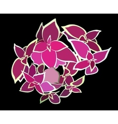 Bouquet Beautiful Pink Flower vector image vector image