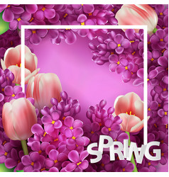 bright lilac flowers and tulips decorative frame vector image