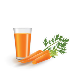 carrot juice with fresh carrots beside the glass vector image