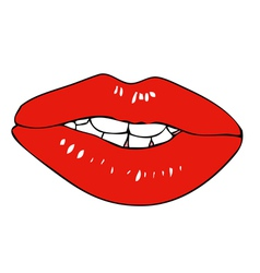 Fleshy lips vector image