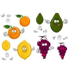 Funny cartoon isolated fruit characters vector image