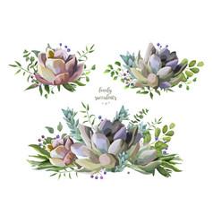 Succulent flower plant watercolor hand drawn vector